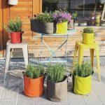 progetto-giardino-collezione-bacsac